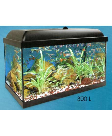 acuario 300L