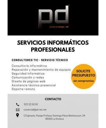 Servicios informáticos profesionales